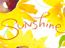 Sunshine<br>Kathy Davis Thank You eCards