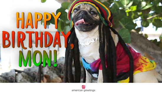 Funny birthday ecards for all occasions american greetings oukasfo tagsfunny birthday ecards for all occasions american greetingsbirthday ecards send birthday cards online with americanbirthday cards free birthday wishes m4hsunfo