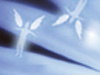Friends Are Angels  -- Free Inspirational, Screensavers from American Greetings
