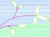 Aqua Flora  -- Free Trendy Nature, Screensavers from American Greetings