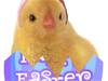 Easter Surprise  -- Free Cute Easter,Cute  Holiday Screensavers from American Greetings