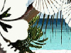 Tropical Afternoon  -- Free Just Because Anyone, Screensavers from American Greetings