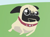Pug Happy  -- Free Dogs, Pets Screensavers from American Greetings