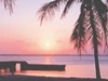 Tropical Sunset  -- Free Beach, Nature Screensavers from American Greetings