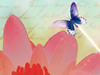 Water Lily  -- Free Trendy Animal, Screensavers from American Greetings