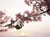 Spring Blossoms  -- Free Just Because Animal, Screensavers from American Greetings