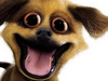 Office Craziness  -- Free Dogs, Pets Desktop Wallpapers from American Greetings