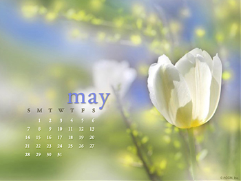 may calendar wallpapers free wallpapers desktop themes