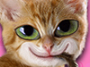 Smug Kitty  -- Free Cats, Pets Desktop Wallpapers from American Greetings