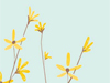 January Calendar  -- Free Simple Flower,Simple  Nature Desktop Wallpapers from American Greetings