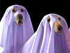 Spooky Pooches  -- Free Funny Pets, Desktop Wallpapers from American Greetings