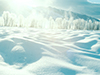 Blanket of Snow  -- Free Traditional Celebrate Winter, Desktop Wallpapers from American Greetings
