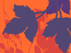 Autumn Tapestry  -- Free Trendy Just Because Nature, Desktop Wallpapers from American Greetings