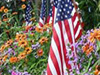 Patriotic Bouquet  -- Free Traditional Holiday Nature, Desktop Wallpapers from American Greetings