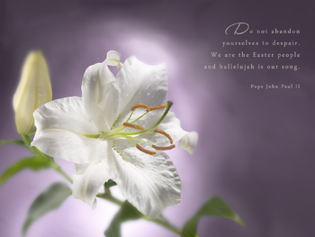 Easter Inspiration - wallpapers, Free wallpapers Desktop Themes ...