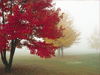 September Calendar  -- Free Traditional Nature, Desktop Wallpapers from American Greetings