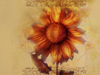 Golden Sunflower  -- Free Trendy Flower,Trendy  Nature Desktop Wallpapers from American Greetings