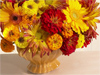 Bold Bouquet  -- Free Traditional Celebrate Fall, Desktop Wallpapers from American Greetings