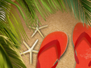 Tropical Escape<br>Tic Tac Toe Summer eCards
