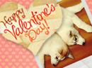 Furever Love Valentine's Day eCards