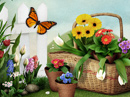 Garden of Wishes<br>Interactive Mother's Day eCards
