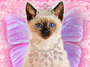 Princess Kitty<br>Talking Card Halloween eCards