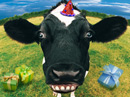 Holy Cow!<br>Talking Card Birthday eCards