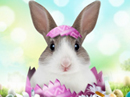 Bunny Hugs<br>Talking Card Easter eCards