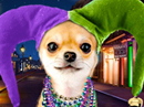 Happy Mardi Gras!<br>Talking Card Mardi Gras eCards