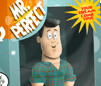 Mr. Perfect - Flannel