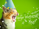 Birthday Cat<br>Postcard Birthday Postcards