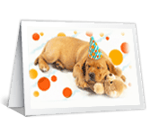 Birthday Dreams greeting card