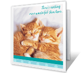 Cuddly Anniversary Wishes greeting card