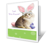 Purr-fect Easter printable card