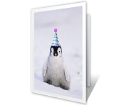 Winter Brrrr-thday printable card