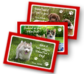 Valentine Furry Friends greeting card