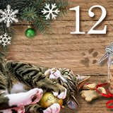 Christmas Inspiration Day 12