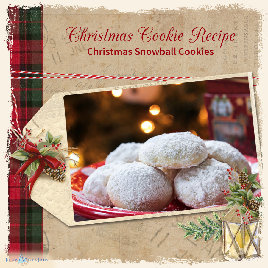 Christmas Snowball Cookie