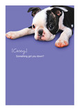 Sad Puppy 5x7 Folded Card