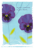 Pansy Memories and Heart 5x7 Folded Card