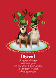 Funny Christmas Elf Dogs 5x7 Folded Card