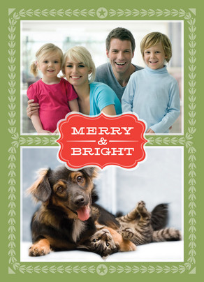 ; Christmas Photo Ideas for Pets