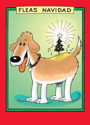 Fleas Navidad 5x7 Folded Card