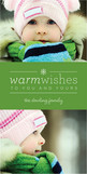 Green Warm Wishes 4x8 Flat Card
