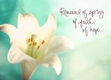 Renewal Spring Faith 7x5 Folded Card