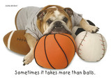 Sports Balls Bulldog 7x5 Folded Card