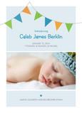 Blue Flags Birth 5x7 Flat Card
