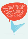Birthday Texts and Tweets 5x7 Folded Card