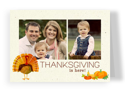 Thanksgiving Turkey 7x5 Folded Card