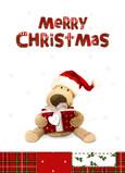 Stuffed Animal Christmas 5x7 Folded Card